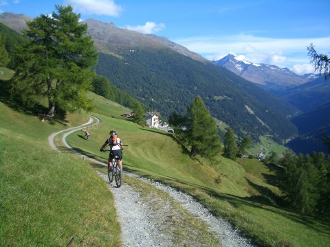 Mountainbike Valfurva